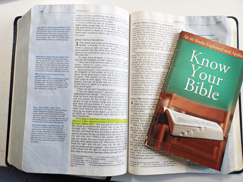 John 3 16 Bible Verse