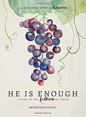 He is Enough Bible Study Cover
