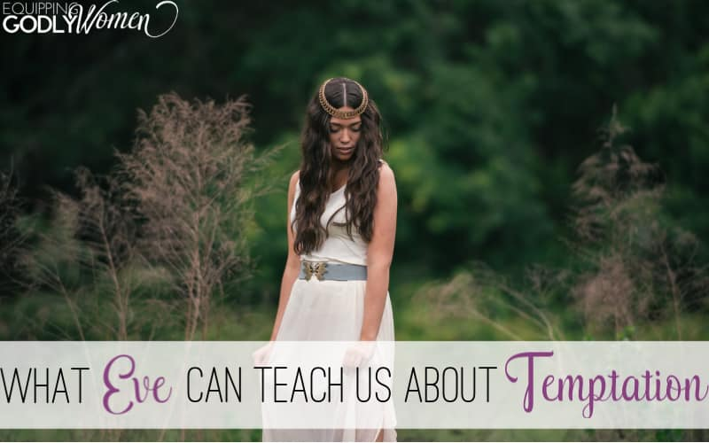 Ever wonder about the Adam and Eve Bible story and what we can learn from it today? Learn what the Adam and Eve story for kids can teach us about temptation.
